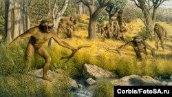 В целом австралопитеки — это приматы, которые на эволюционном дереве располагаются между миром животных и человеческим родом