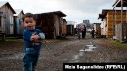 ეკომიგრანტები ხელვაჩაურის სიახლოვეს თვითნებურად გაშენებულ სოფელში