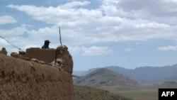 Një polic afgan në pozicion afër qytetit Tarin Kot