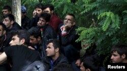 Венгрия. Задержанные венгерской полицией иракцы ожидают решения своей судьбы после того, как они пересекли сербско-венгерскую границу возле деревни Асоттахалом