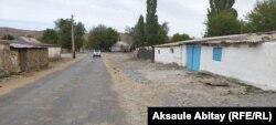 Село Каскабулак Таласского района Жамбылской области. 12 августа 2020 года.