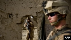 U.S. Marines on patrol in Helmand Province