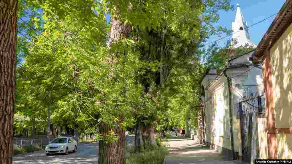 Улица Шмидта, где немало зданий старой застройки. Отсюда виднеется островерхая крыша особняка Ракова