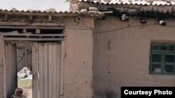 Ўзбекистонда фермерчилик ривожланмаганидан қишлоқ аҳолиси турмуши оғир экани айтилади.