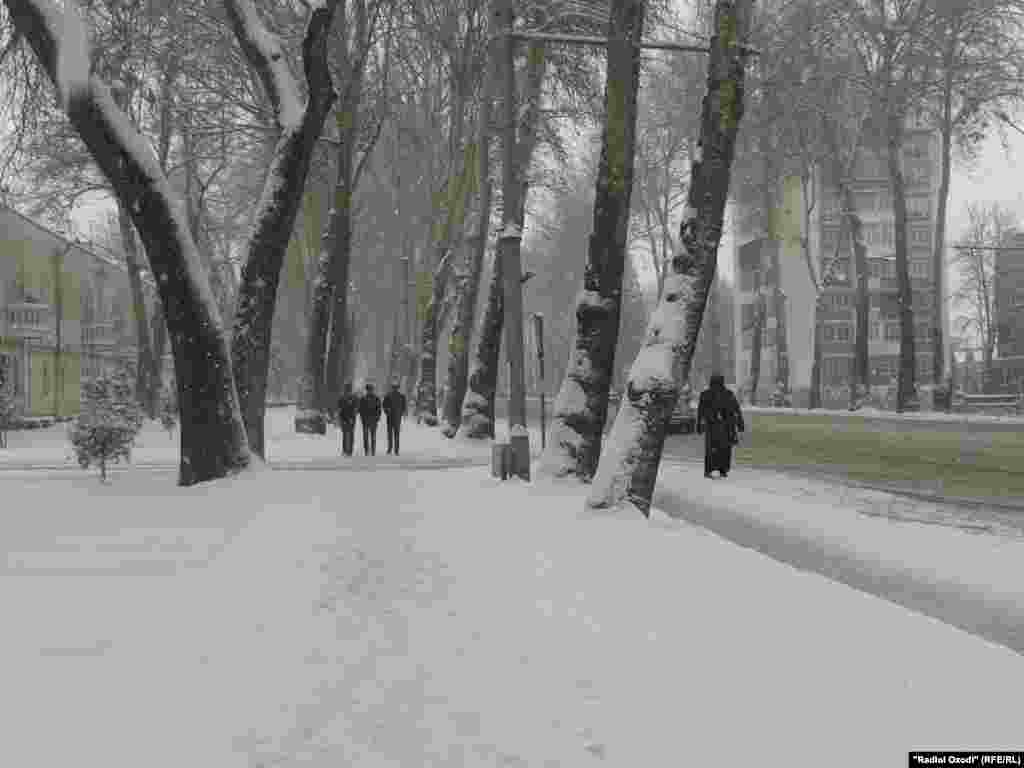 Snow coats the sidewalks, roads, and trees in Tajikistan's capital.