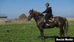 Конь по кличке Барон.