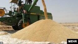 راشد: هند پیش از این تعهد کمک بلاعوض ۵۰۰ هزار تُن گندم را با افغانستان کردهبود و این گندم نیز بخشی از آن است.