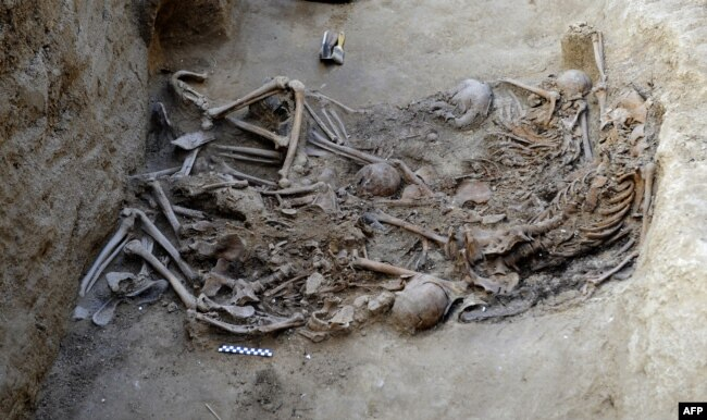 Останки 14 женщин, убитых франкистами на юго-западе Испании в годы гражданской войны, найденные в 2012 году