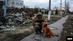 A Ukrainian soldier plays with a dog in the eastern city of Debaltseve.