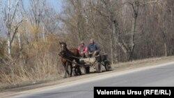 """""""Prin Siberia toți în patru picioare merg, e degradare completă."""""""