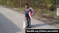 Младшеклассник одной из андижанских школ несет в школу пакет с собранным хлопком, 2017 год.