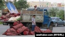 Türkmenistanda Haly baýmary mynasybetli geçirilen çäreleriň birine gatnaşan işgärler.