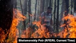 Пожар в лесу. Иллюстративное фото.