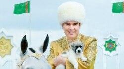 Türkmen prezidenti çeh hünärmenlerine öz atlarynyň şekili çekilen wiski bulgurlaryny buýurdy