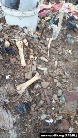 Некоторые бывшие пациенты «Рашида-табиба» утверждают, что костную муку лекарь готовит из костей, найденных в мусорных свалках.