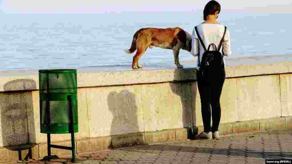 На прогулку по набережной выходят с питомцами