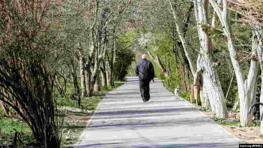 Прогулянка з тваринами – чудовий привід вийти на вулицю