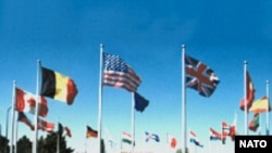 NATO-nun Baş qərargahı, Brüssel