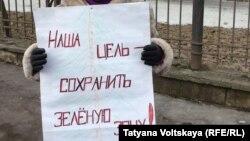 Пикет против застройки сквера (Петербург, 2 марта 2015 года)