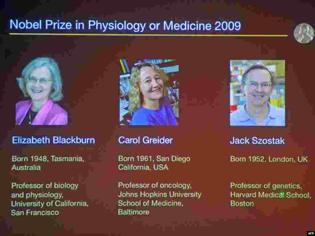 5 tetor 2009 - Tre shkencëtarët amerikanë, Elizabet Blekbërn, Karol Greider dhe Xhek Zostak, fitojnë çmimin për mjekësi. Ata janë vlerësuar për punën e tyre lidhur me enzimat.