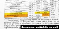 Аудиторський звіт Державної фінансової інспекції діяльності підприємтсва «Імпульс»