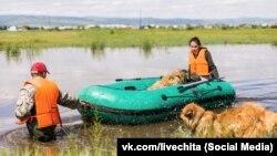 Жители Читы во время наводнения