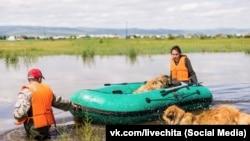 Жители Читы во время наводнения (архивное фото)