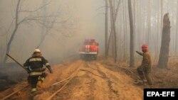 Пожежа в Чорнобильській зоні, 10 квітня 2020 року