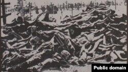 1933 елда совет Украинасындагы Һолодомор корбаннары