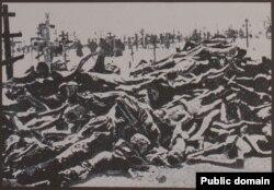 Украинехь мацаллех беллачерийн декъий, 1932-1933-чу шерашкахь мацалла хьегначийн синошна леррина Киевехь хIоттийначу гайтамера сурт, 2007