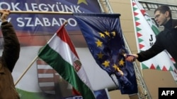 Палење на знамето на ЕУ во Унгарија за време на протестите на 12 јануари 2012