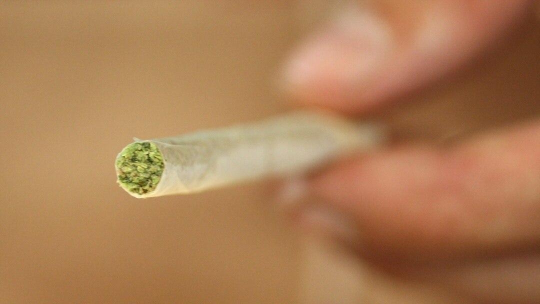 Курю марихуану год какую коноплю лучше курить