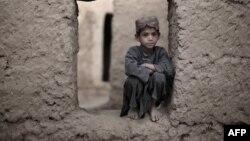 د پاکستان د پښتونخوا او افغانستان ولس زښت غریب دی، د خټو په کورونو کې اوسي، بچي یې بې تعلیمه پاتې کېږي او بیا داسې پېښې هم کېږي لکه د کامران ځانوژنه!!