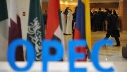 Türkmenistan OPEC-iň nebit önümçiligini azaltmak ylalaşygyna 'meýilli'