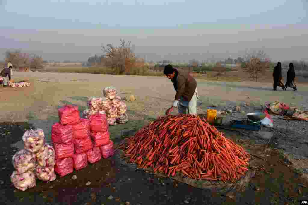 An Afghan vendor arranges a mound of harvested carrots in Jalalabad on December 19. (AFP/​Noorullah Shirzada)