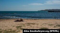 Пляж в Феодосии. Иллюстрационное фото