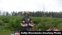 Зульфия Шевченко