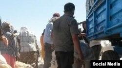 Правительство Узбекистана игнорирует призывы международных организаций об отказе от использования принудительного труда во время хлопковой кампании.