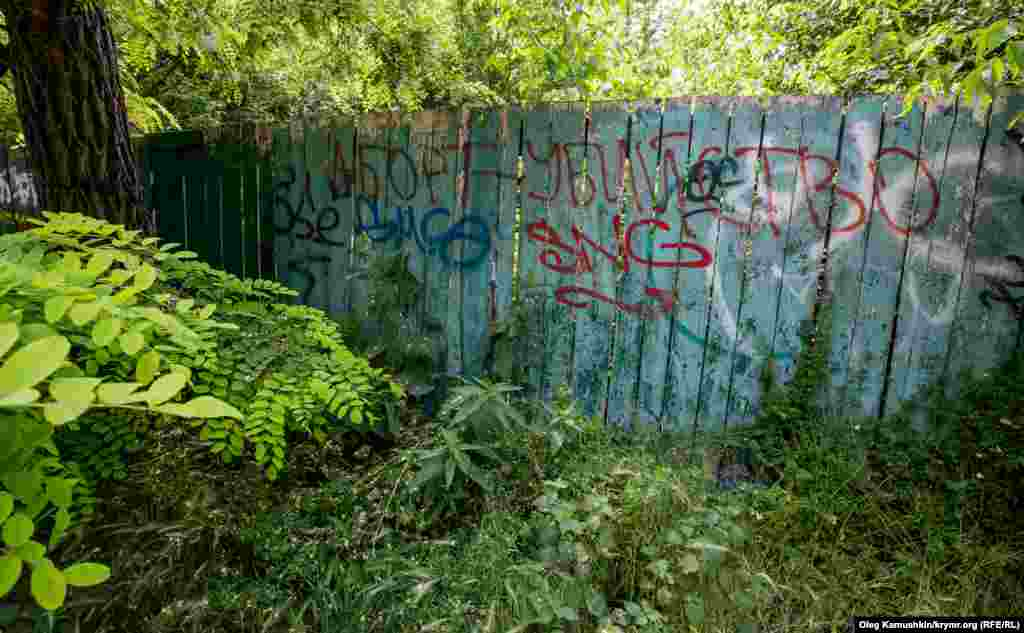 Часто зустрічаються графіті, що виражають соціальний протест, політичні симпатії чи антипатії