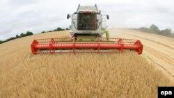 Земеделски дружества в България са се опитали да придобият допълнителни средства от ЕС с измама