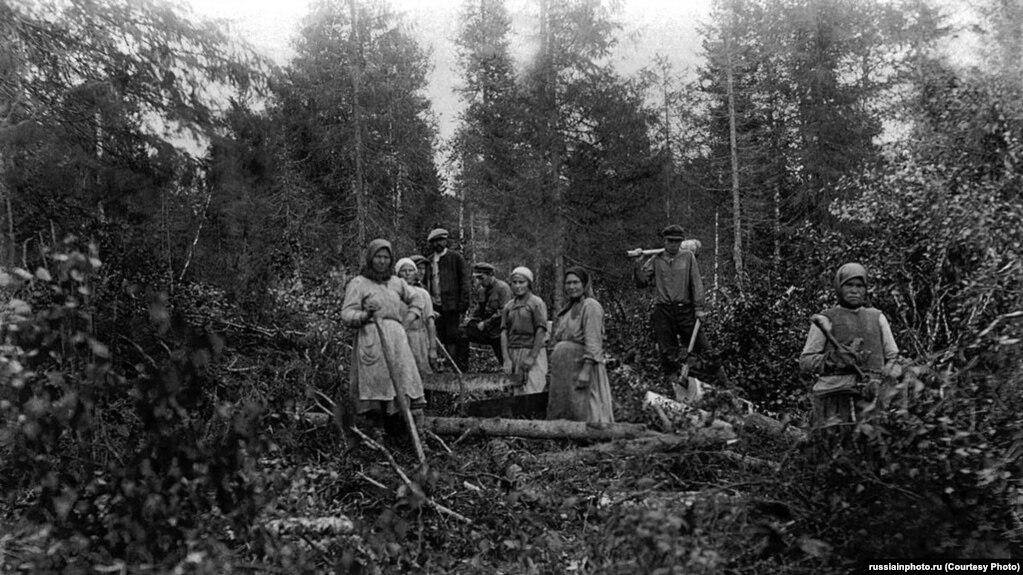 Спэцпасяленцы на нарыхтоўцы лесу