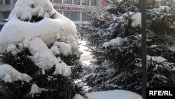 Снегопад в Семее. Март 2010 года.