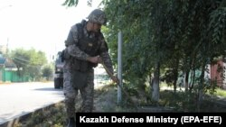 На фото, распространенном министерством обороны Казахстана 26 июня 2019 года, сотрудник саперного подразделения проводит осмотр местности во время операции по обнаружению снарядов в городе Арысь Туркестанской области.