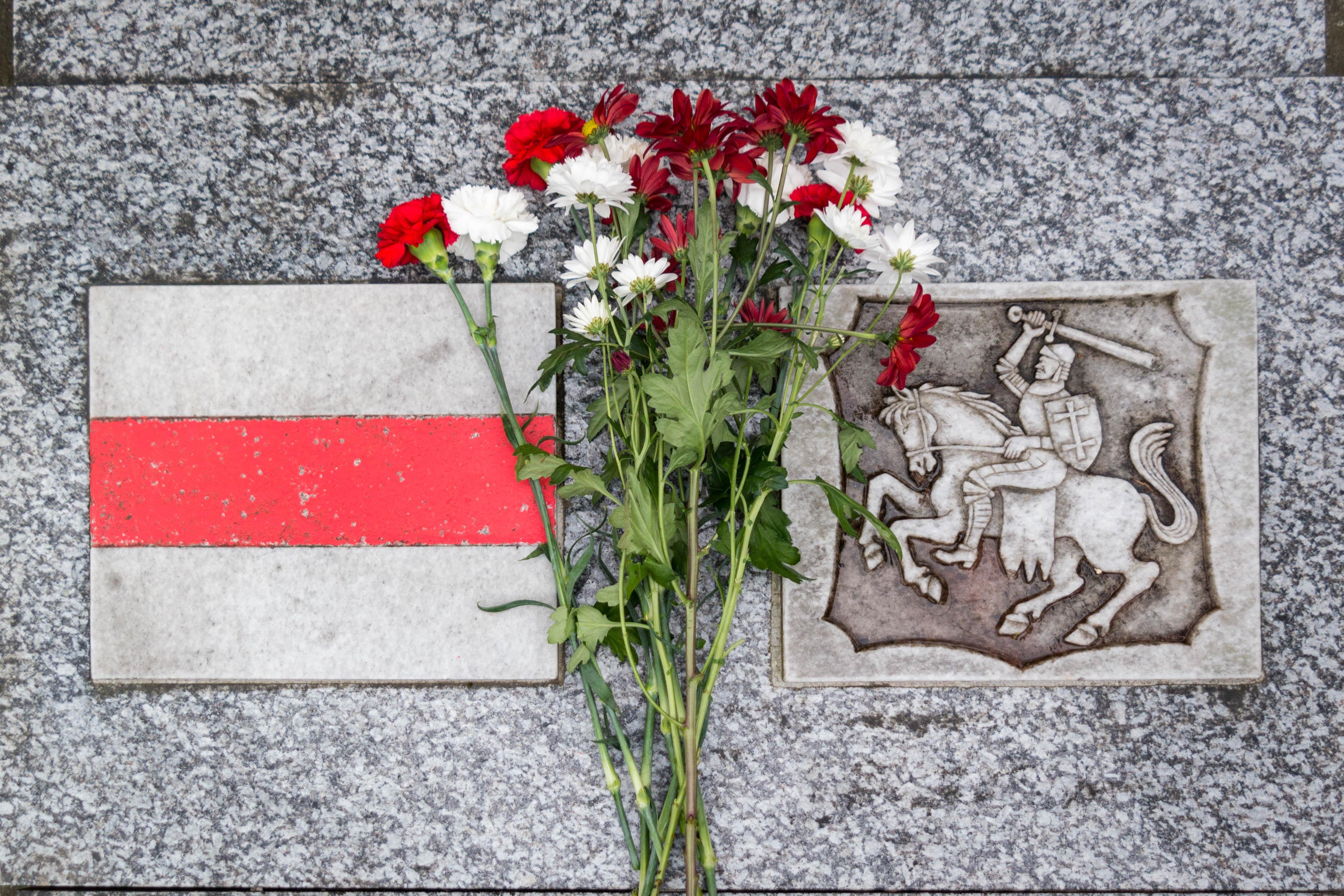 Ці былі «Пагоня» і бел-чырвона-белы сьцяг дзяржаўнымі сымбалямі БССР?