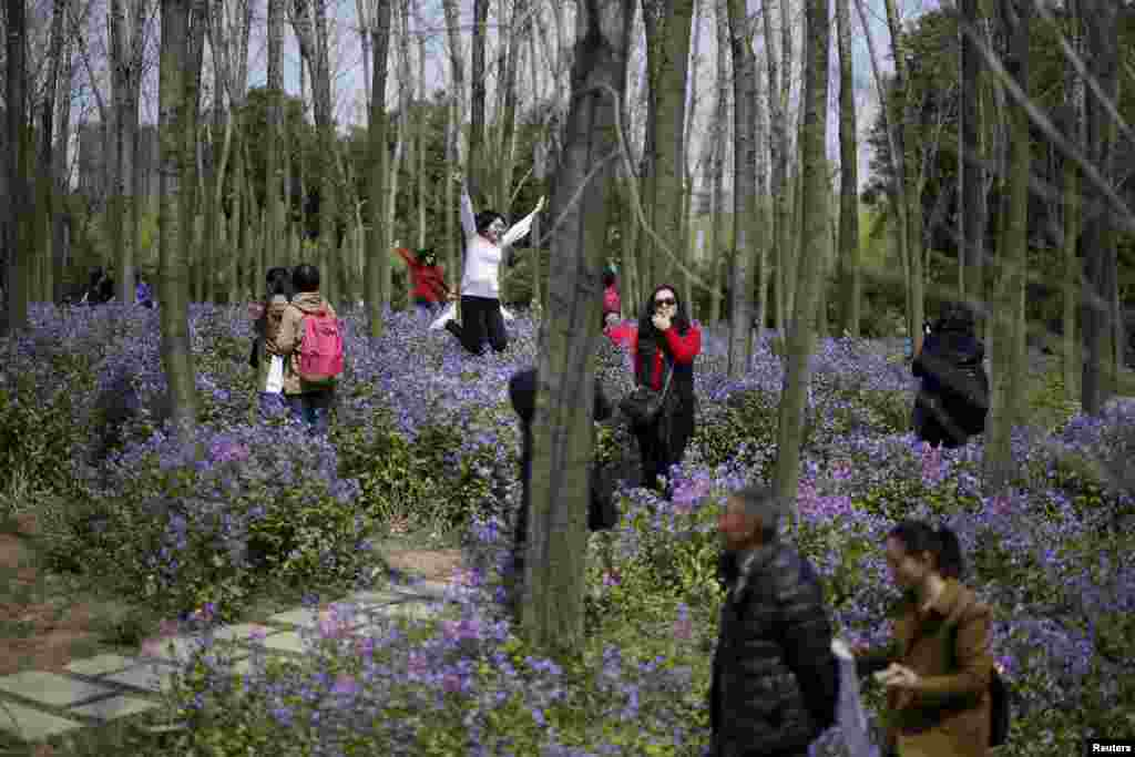 People visit a park with blooming flowers during spring in Shanghai, China. (Reuters/Aly Song)