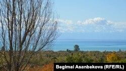 Берег озера Иссык-Куль.