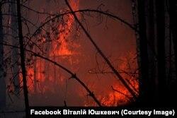 Лісові пожежі у Овруцькому район Житомирщини. Фото Віталія Ющкевича. 16 квітня 2020 року