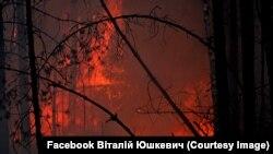 Лісові пожежі в Овруцькому район Житомирщини. Фото Віталія Юшкевича, 20 квітня 2020 року