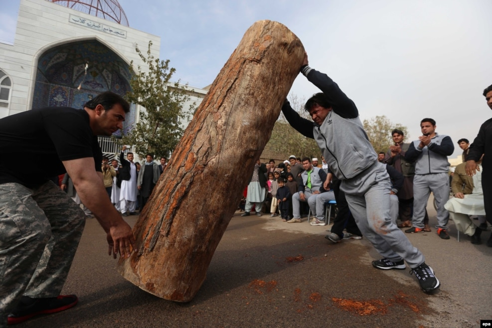 An Afghan athlete raises a tree-trunk during a strongman contest in Herat on November 8. (epa/Jalil Rezayee)