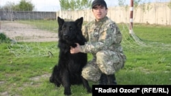 Tajikistan -- Greys - war dog and its trainer Mahmadrahim Azimov, Dushanbe, 12Apr2012